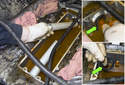 Then remove the rear of the coolant pipe.