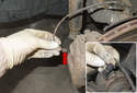 Pull the brake pad wear sensor out of the rear brake pad (red arrow).