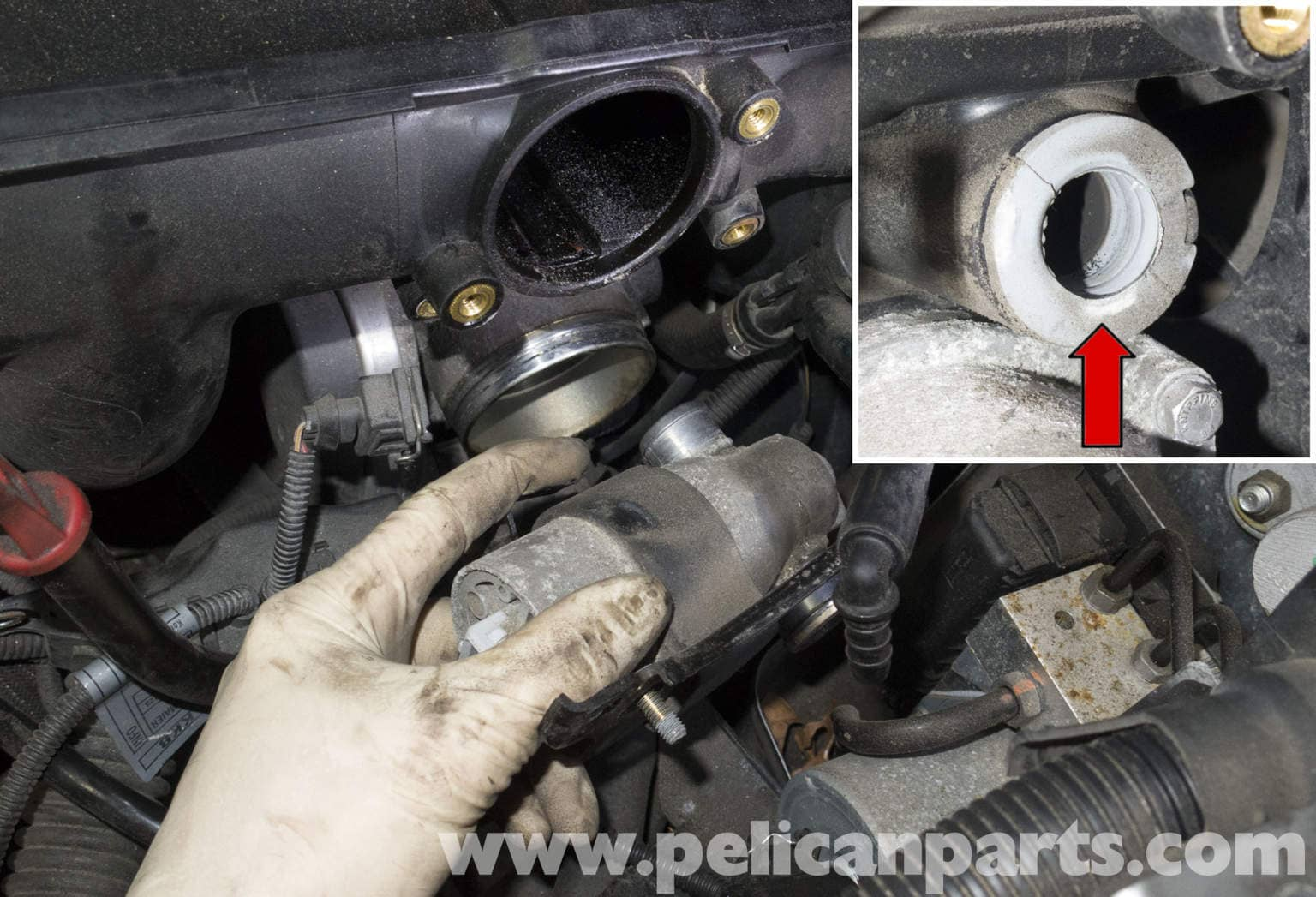Pelican Technical Article Bmw X3 M54 6 Cylinder Engine