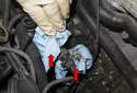 Cover the VANOS oil line and banjo fitting hole with lint-free rags to keep debris from entering the oil system.