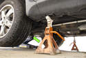 Jacking front of vehicle: When using a hydraulic floor jack to lift front of vehicle, place hydraulic floor jack under the square subframe support (green arrow).