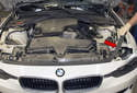 Working at top of radiator support, peel off the hood seal and remove (red arrow).