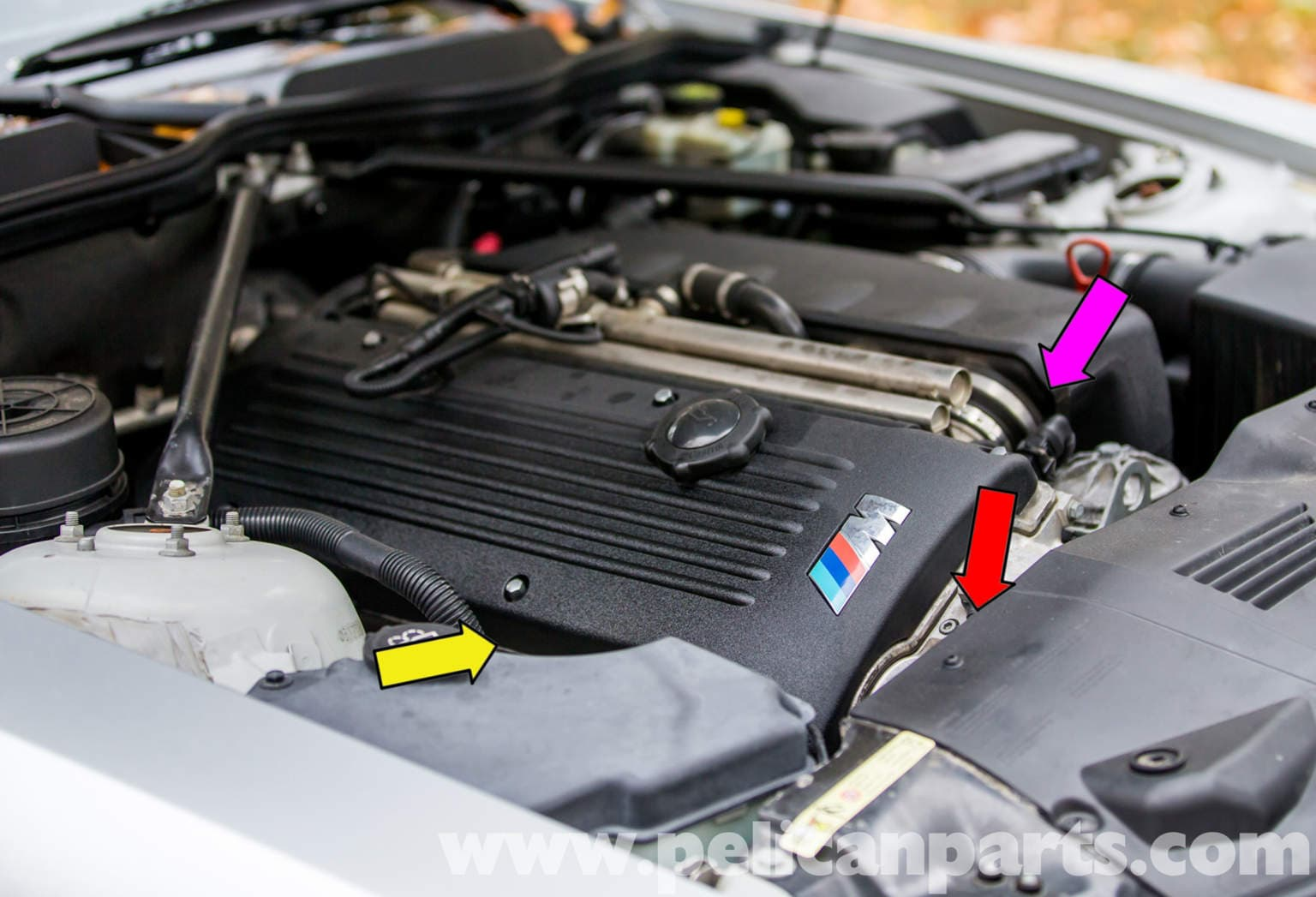 Bmw Z4 M Oil Leak Diagnosis 2003 2006 Pelican Parts