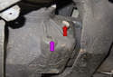With the splash shield removed, you now have access to the fill (red arrow) and drain plug (purple arrow).