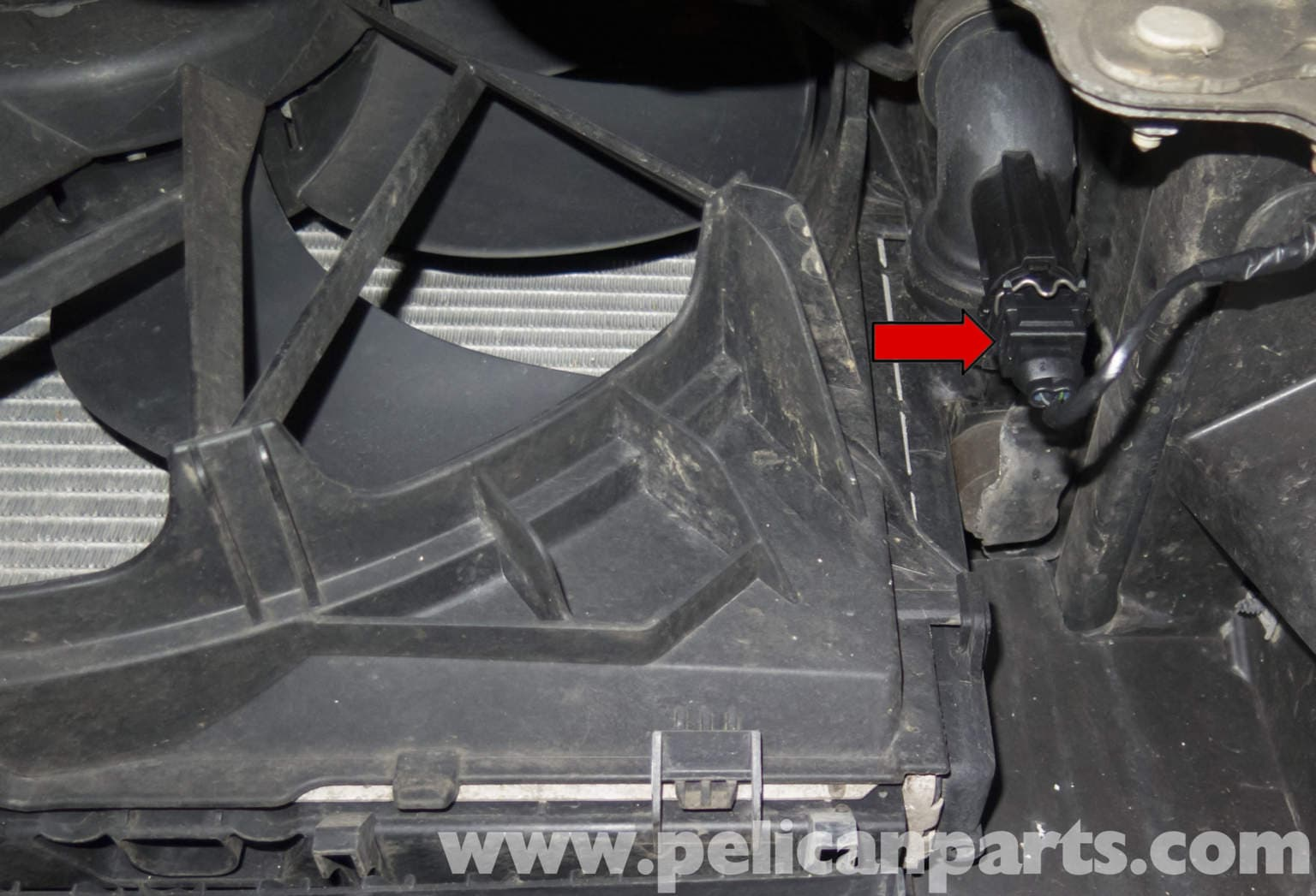 Bmw Z4 M Radiator Outlet Temperature Sensor Replacement