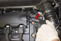 Remove the hose from the valve cover (red arrow).