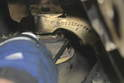 Using a 6mm Allen wrench, loosen and remove the Allen bolts closest to the engine that holds the engine mount.