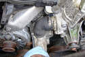 Loosen the lower hose clamp of the thermostat housing hose.