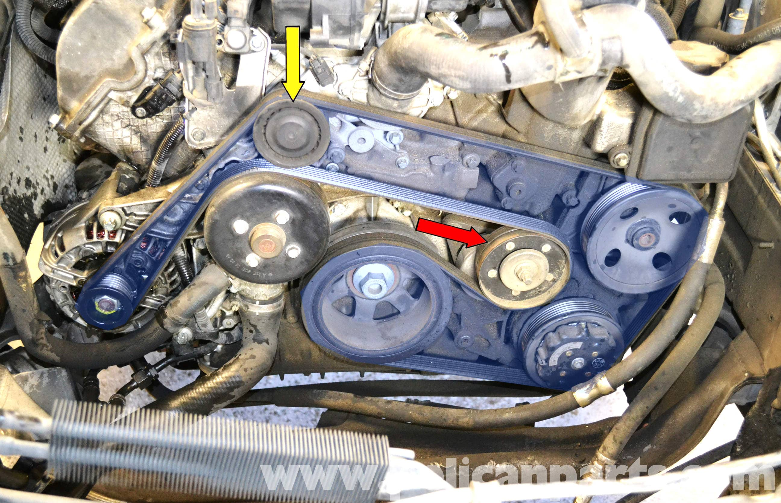 pic01 mercedes benz w203 idler pulley replacement (2001 2007) c230 Chevy Engine Wiring Harness at panicattacktreatment.co