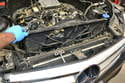 You will need to remove the radiator fan to replace the radiator.
