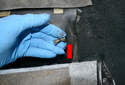 Rear Seat -Use a 10mm wrench and remove the bolts form each side (red arrow).