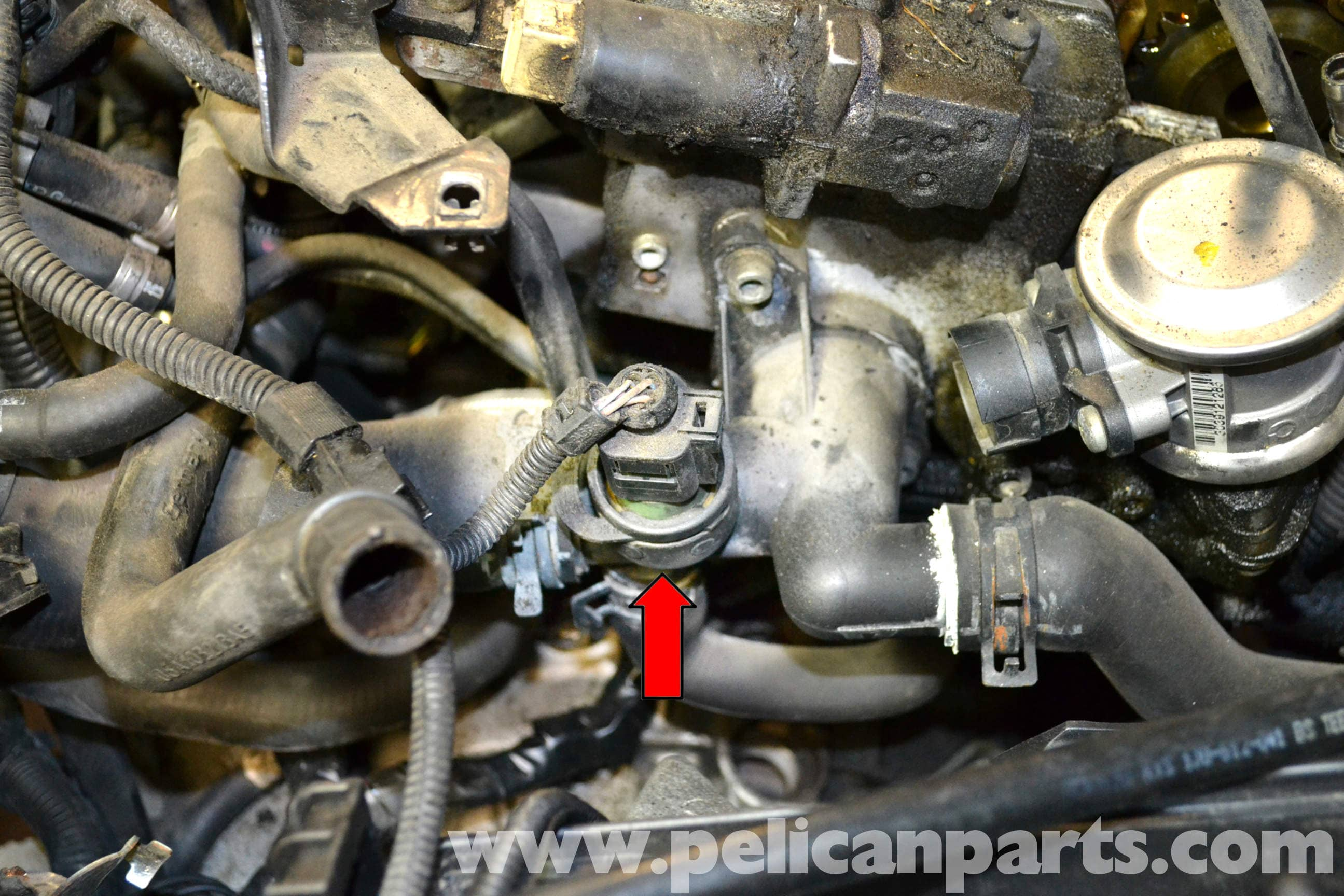 Volkswagen Golf GTI Mk IV Coolant Temperature Sensor Replacet ...