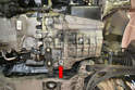 Locate the transmission drain plug (red arrow) It is located beside the rear dog bone bolt on the bottom of the transmission case.